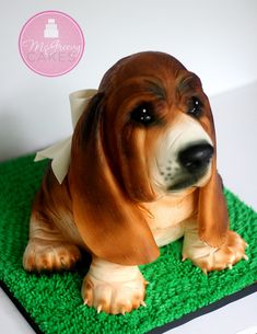 The making of the basset hound puppy cake, tips and tricks! Puppy Birthday, Birthday Cakes, 10th Birthday, 3d Cake Tutorial, Puppy Dog Cakes, Gravity Cake, Hound Puppies, Sculpted Cakes, Bird Cakes