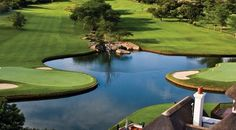 At Leopard Creek Country Club, in South Africa, crocodiles, hippos, antelope, buffalo and elephants are often seen roaming the course or in the nearby park! #GolfCourseOfTheDay | Rock Bottom Golf #RockBottomGolf