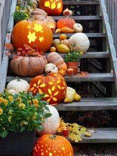 Beautiful Pumpkins!