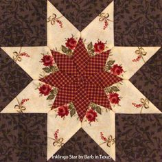 """Inklingo Star by Barb in Texas. Shown on the All About Inklingo blog. Print identical sheets of fabric for """"No Waste Fussy Cutting."""""""