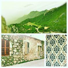 Qu'évoque le vert à Chypre