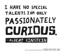 funny Albert Einstein quote curious on imgfave