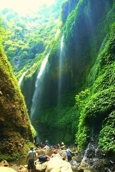 madakaripura waterfall probolinggo east java indonesia - Google zoeken