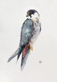 Watercolor Bird, Paintings For Sale, Lovers Art, Pet Birds, Buy Art, Horses, Artist, Artwork, Animals