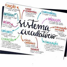 School Motivation, Study Motivation, Medicine Notes, Mental Map, Study Organization, Medical Anatomy, Lettering Tutorial, Study Inspiration, Study Notes
