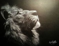 "white coloured pencil on black paper ""Lion"""