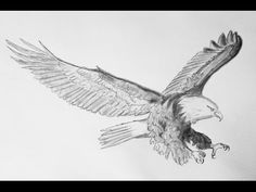 Art in 3D - Drawing a Hunting Eagle - Awesome 3D Animals - YouTube Drawing Skills, Drawing Techniques, Hunting Drawings, Eagle Drawing, 3d Drawings, Learn To Draw, Glass Art, Moose Art, Sketches
