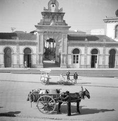 Loulé market in the (photo: Artur Pastor) Algarve, Old Pictures, Old Photos, Vintage Photographs, Vintage Photos, Places In Portugal, Us Veterans, Portuguese, Places To Travel