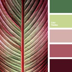 bright green, burgundy color, green color, leaf color, light green color, maroon color, pale pink, shades of burgundy, shades of green, shades of light-green, shades of pink.