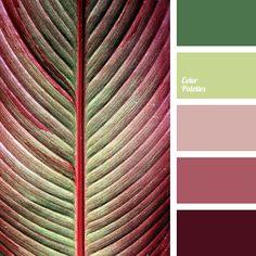bright green, burgundy color, green color, leaf color, light green color, maroon color, pale pink, shades of burgundy, shades of green, shades of light-green, shades of pink.