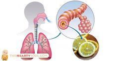 Image of How To Cure Asthma: Everything You Need To Know To Naturally Reverse It
