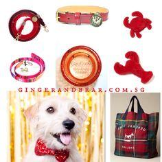 Gearing up for the new year, welcome the Monkey!  Huat ah!!! #gingerandbear #sniffoutsomethingspecial #designfordogs #dogmeetsdesign #dogculture #stylishdog #stylishdogsg #clubpetsmag #petsmagazinesg #buzzfeed #petexposg #petexposg2016 #dogcollar #dogfashion #dogfashionista #dogstyle #sgdogfashionista #sgstylishdog #dogleash #gourmetdog