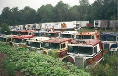 Oh the stories these KW COES could tell of the good ol days. Show Trucks, Big Rig Trucks, Old Trucks, Pickup Trucks, Antique Trucks, Vintage Trucks, Custom Big Rigs, Custom Trucks, Kenworth Trucks