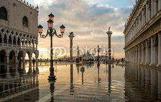 Venezia  3989 77398876