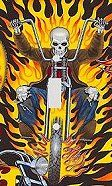 Flame Skull Biker Decorative Switchplate Cover