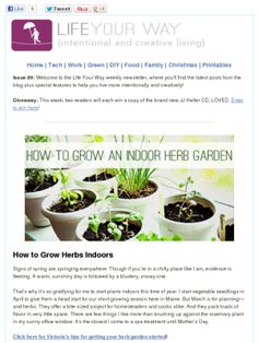 How to grow an indoor herb garden