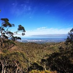 Main Valley and Rockdale Hill walk | 24 Spectacular Adelaide Walks That'll Make You Want To Spend The Day Outside