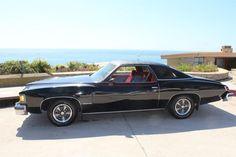 Finalist-1977 Pontiac LeMans Super-Sport. V-8 5.7 Litre, 4 Barrel carburetor. 96,000 Original miles, original paint, rims.  Submitted by Rasa Hodges.
