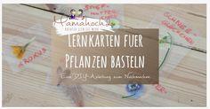 Eine DIY Anleitung für montessori-inspirierte Lernkarten aus echten Pflanzen. Zudem verraten wir dir direkt ein par Spielideen für zu Hause.