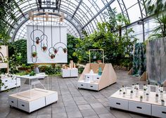 Naturalist exhibition aims to reconnect city dwellers with nature | Dezeen