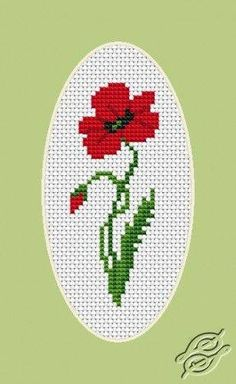 Wildflower poppy cross stitch.