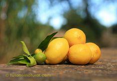 Aceite esencial de limónEn todos mis cursos de aromaterapia cuando llega el momento de oler las esencias de cítrico el ambiente se relaja, comienzan las bromas y el buen humor se apodera de los alu…