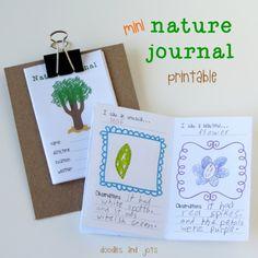 Mini Nature Journal Printable • Artchoo.com (E.g., I saw a beautiful... I saw an unusual... I saw a small... I saw a big... I saw an old... I saw a new...)