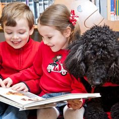 How dogs help children learn how to read. An incredible program!    Pawsh Magazine: 'RUFF' READING (photos by Brittany Venoit)