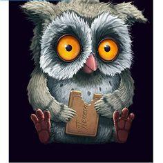 5D Owl Eating Cookies