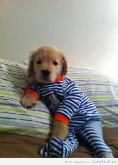 bed time!