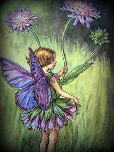 Fairy by: Cicely Mary Barker Más Más Cicely Mary Barker, Elfen Fantasy, Fantasy Art, Elves And Fairies, Fairy Pictures, Vintage Fairies, Fairytale Art, Beautiful Fairies, Flower Fairies