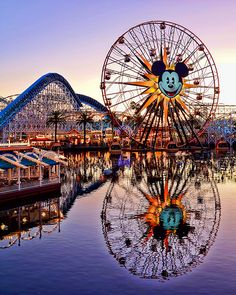 Sunset over Mickey's Fun Wheel - California Adventure Park