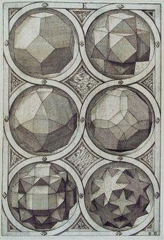 Scientific Illustration | themagiclantern: Jost Amman, Sechs Oktaeder,...