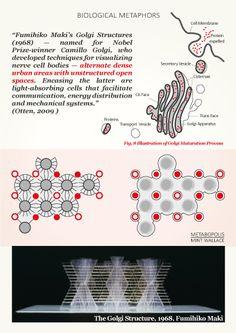Fumihiko Maki's Golgi Structures