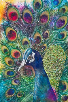 Golden Peacock Mixed Media