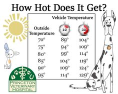temperature inside car chart why you should never leave your pet in the car if its over 60. Black Bedroom Furniture Sets. Home Design Ideas