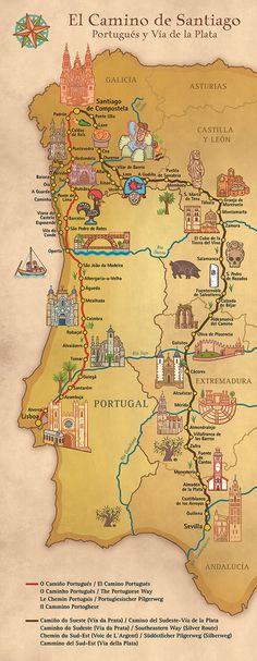 Map showing different routes for the Portuguese Camino de Santiago - Map showing different routes for the Portuguese Camino de Santiago - Portugal Travel, Spain And Portugal, Spain Travel, Camino Trail, The Camino, Travel Maps, Places To Travel, Camino Portuguese, Travel Inspiration