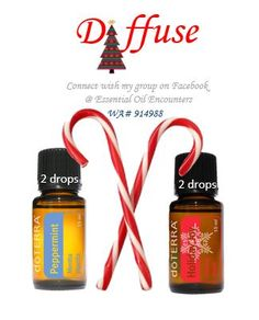 Holiday Joy and Peppermint Oil diffuser blend - purchase oils at www.mydoterra.com/agree.