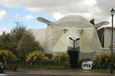 Animal Architecture… !! |
