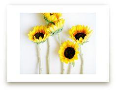 """Summer Sun"" - Limited Edition Art Print by Kristin Muntean in beautiful frame options and a variety of sizes. Art Wall Kids, Art For Kids, Summer Sun, Kids Decor, Custom Art, Plexus Products, Framed Art, Wall Art Prints, Vibrant Colors"