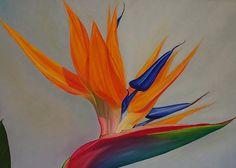 bird of paradise inspiration
