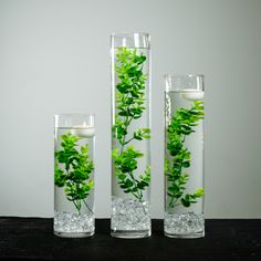 Submersible Evergreen Eucalyptus Floral Wedding Centerpiece with Floating Candles and Acrylic Crystals Kit Terrarium Wedding Centerpiece, Cylinder Vase Centerpieces, Floating Candle Centerpieces, Wedding Reception Centerpieces, Flower Centerpieces, Quinceanera Centerpieces, Wedding Bouquets, Green Wedding Arrangements, Floral Arrangements