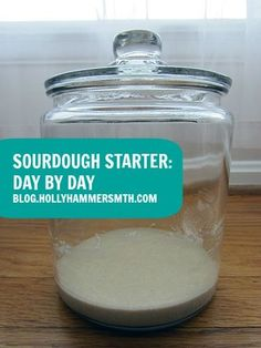 Sourdough Starter - shows day-by-day photos of what the starter should look like.  Great for beginning bread bakers!