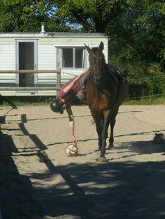 Take a risk. If the outcome isn't what you expected, at least you can say can say you tried. #horseball #longwaydown