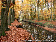 Angel,Wolbeck,imTiergarten, Am Tiergarten, 48167 Münster - Wolbeck (2011)