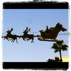 An early Santa Claus sighting in Beverly Hills. Photo taken with instagram by Steven Swimmer in 2011.