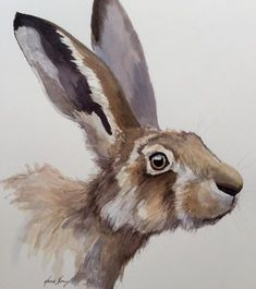This is an original ink and watercolour of a hare .