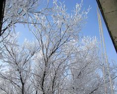 5 декабря. Жизнь -это радуга. Окуни кисточку в радугу- и нарисуй сегодняшний день. пятый день - цвет голубой