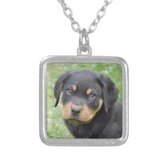 #Doggy McDogface Rottweiler Puppy Silver Plated Necklace - #rottweiler #puppy #rottweilers #dog #dogs #pet #pets #cute