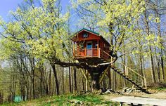 Treehouse Cabins in Canada - Treehouse Accommodations Quebec